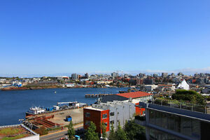 3BD/2BA - Synergy - The Ocean View Suite