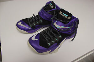 Nike Zoom Soldier - Lebron VIII - Hornets - Purple size 8.5