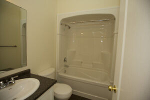 EXCLUSIVE -- BACHELOR APARTMENT in Historical Downtown Galt Cambridge Kitchener Area image 3
