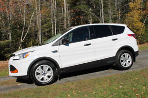 Immaculate 2014 Ford Escape