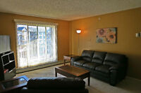 Move-in Ready/Furnished - 2 bedroom Condo in Downtown - Nov 1st