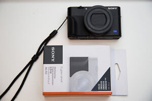 SONY RX100V5 LCD SCREEN PROTECTION + GRIP + WRIST CINCH - $40