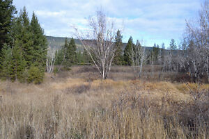 Great Building Lot on South Lakeside Williams Lake Cariboo Area image 10