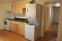 Newly Reno'd 1 bedroom basement suite for rent. Available Novemb