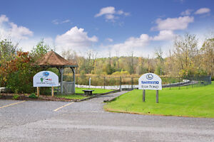 Hunting and Fishing Heritage Centre! Peterborough Peterborough Area image 3