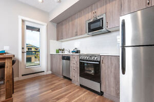 Modern Townhomes in South Edmonton for Sale