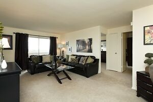 JULY OR AUGUST RENOVATED ONE BEDROOM SUITES London Ontario image 4