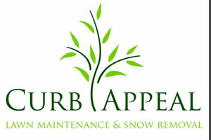 Snow removal and fall clean up deals Oakville / Halton Region Toronto (GTA) image 1