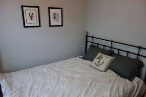 1 Bedroom Apt, Beautiful, Clean, Furnished, Cozy, Central, Deck