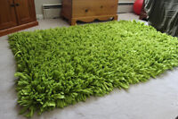 Home Sense Green Area Rug--Must Sell by Sat, Jun 27