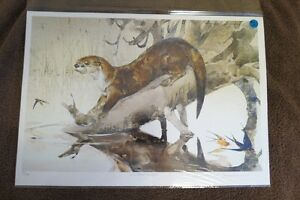 """Limited Edition print-Thomas Quinn - """"River Otter and Swallows"""""""