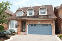 Beautiful Basement Apartment Available!