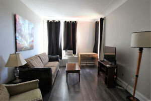 Newly-Renovated 1 Bedroom - Fully Furnished & Contemporary