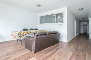 2 br Basement apartment for rent at Parliament and Dundas