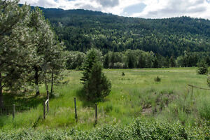 5435 97 Highway N,  Falkland -  2.3 Acres of flat usable land