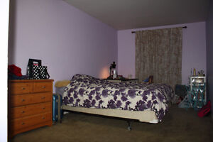 All Included Furnished Room: Sandy Hill, Ottawa University