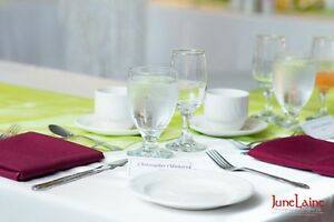 Wedding and Party Rentals ( chair cover $1.00 & linens and more) Edmonton Edmonton Area image 5