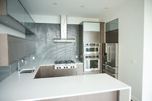 Lower Penthouse in the prestigious SOHO Champaign