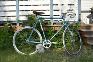 XL Single Speed/Fixie Road Bike