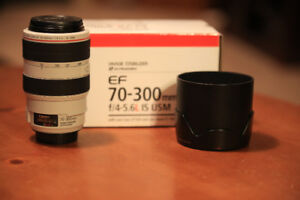 Canon 70-300mm L f/4-5, 6 IS USM
