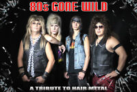 80s GONE WILD:  Hair Metal Tribute @ RockStar Music Hall