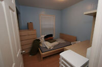 Rooms in 4BR South End Apt, 8 min walk to DAL & SMU