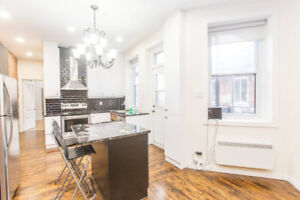 Share a Large newly renovated 4 bedroom apartment in the heart o