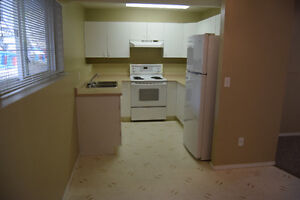 1 Bedroom level-entry Suite in OK Landing (utilities INCLUDED)
