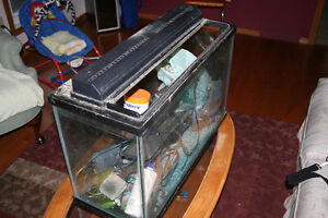 Fish Aquarium with all accessories