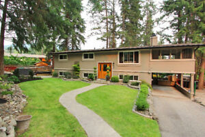 TUNNING FULLY renovated 6-bed 3-bath family home with Suit!