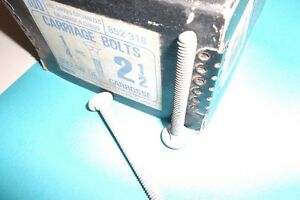 carriage bolt  Papco