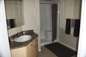 Fully Furnished Studio Suite Strathcona County Edmonton Area image 4