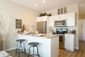 New BRIO 1 Bedroom Townhome Apartment : MOVE IN READY!