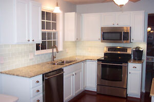 COUNTER TOP AND CABINET