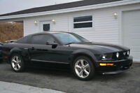 2007 Ford Mustang GT Coupe California Special! PRICE REDUCED!