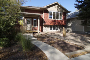 3 Bedroom Beautiful Home in Buena Vista--Available October 1!!