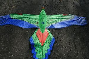 Kite Collection for sale