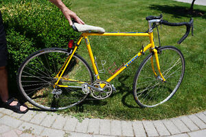TREK 360 Road Bike - (Vintage 1988 Model)