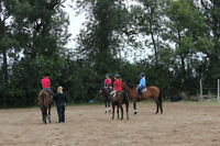 Summer horse and pony camp for kids