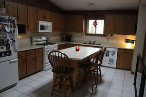 Kitchen Cabinets, island and appliances