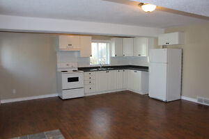 1 Bedroom Apartment. Available January 1st Cambridge Kitchener Area image 3