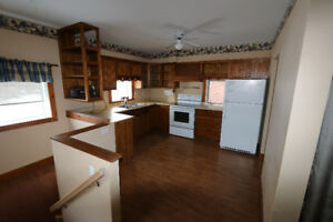 Campbellford house for rent