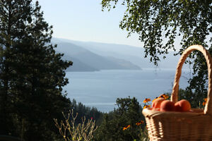 Wedding & Honeymoon on Okanagan Valley BC Organic Farm