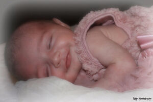 Affordable Photography Peterborough Peterborough Area image 2