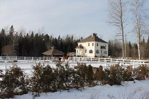 Maison 2 étages (fermette) sur terrain de 16 acres (Sherbrooke)