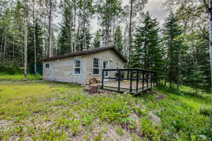 TO BE MOVED! Cabin near Caroline! 104174