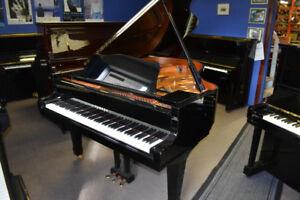Piano Yamaha à queue C3 (6'1'') avec système Silent
