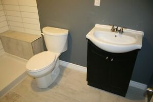 COMPLETELY RENO'D WITH IN-LAW SUITE London Ontario image 9