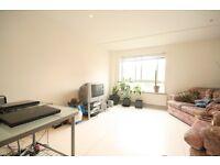 Lovely split level 2 double bedroom Flat - Elephant & Castle