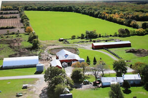 BEAUTIFUL FARM - STONE HOME - CASH CROP LAND / CORN-SOYBEAN